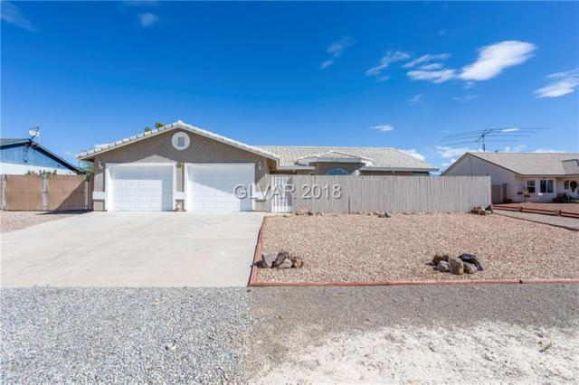 2691 S Dandelion, Pahrump, NV 89048 (MLS #2033025) :: Trish Nash Team