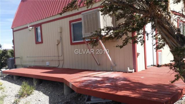 26 Pine, Cold Creek, NV 89124 (MLS #2034549) :: Trish Nash Team