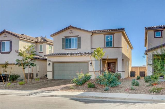 8165 Pale Laurel, Las Vegas, NV 89179 (MLS #2038051) :: The Machat Group | Five Doors Real Estate