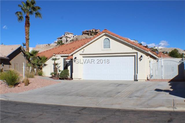 1113 Shady Run, Henderson, NV 89011 (MLS #2044160) :: ERA Brokers Consolidated / Sherman Group