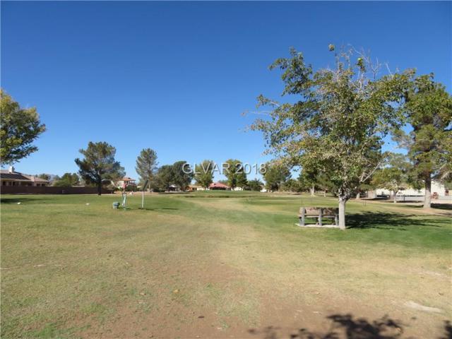 3090 S Monterey, Pahrump, NV 89048 (MLS #2045352) :: Vestuto Realty Group