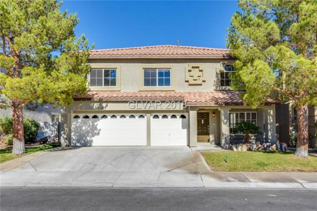 8600 Copper Falls, Las Vegas, NV 89129 (MLS #2045796) :: The Machat Group | Five Doors Real Estate
