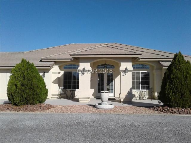 100 E Jaybird, Pahrump, NV 89048 (MLS #2047205) :: The Machat Group | Five Doors Real Estate