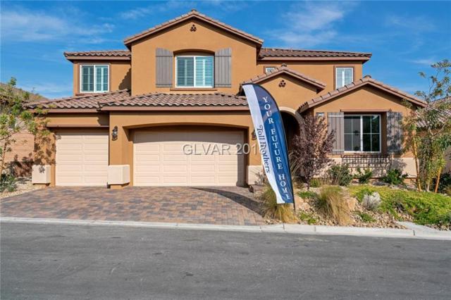 10744 Hammett Park, Las Vegas, NV 89166 (MLS #2049102) :: Signature Real Estate Group