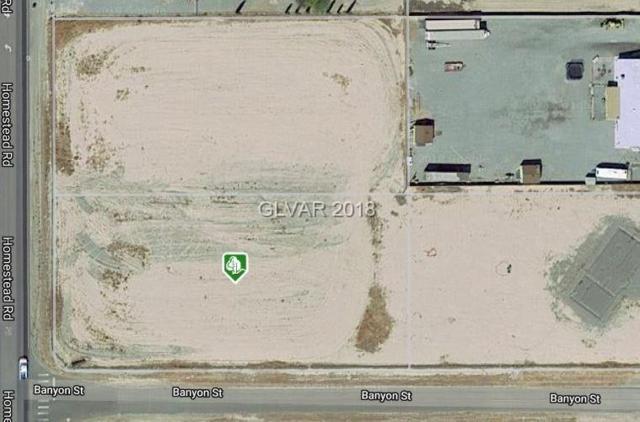 2741 S Homestead, Pahrump, NV 89060 (MLS #2053537) :: ERA Brokers Consolidated / Sherman Group