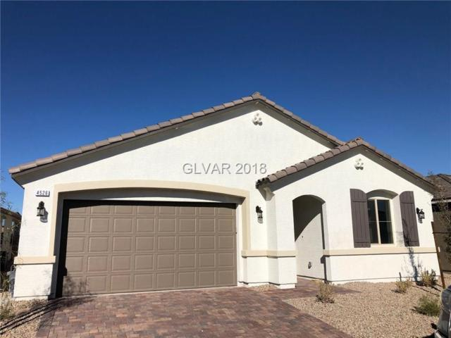 4526 Herbert River, Las Vegas, NV 89141 (MLS #2055056) :: Sennes Squier Realty Group