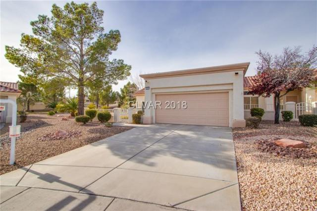 2901 Fitzroy, Las Vegas, NV 89134 (MLS #2055306) :: Sennes Squier Realty Group