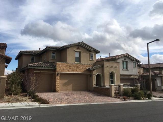 270 Castellari, Las Vegas, NV 89138 (MLS #2061452) :: Capstone Real Estate Network