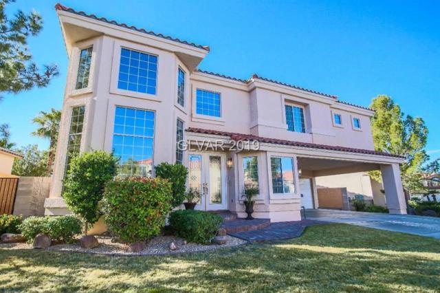 1393 Via Merano, Henderson, NV 89052 (MLS #2063061) :: Signature Real Estate Group