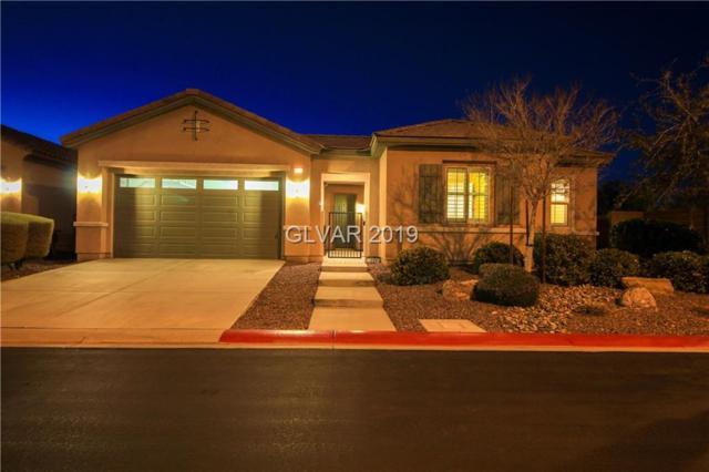 6891 Barred Dove Ln, North Las Vegas, NV 89084 (MLS #2063367) :: Signature Real Estate Group