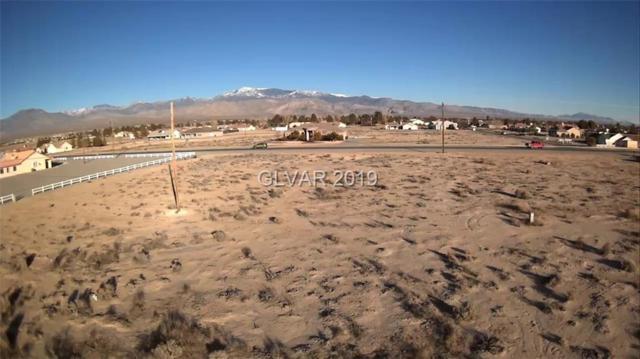 3141 S Mariposa, Pahrump, NV 89048 (MLS #2063547) :: Five Doors Las Vegas