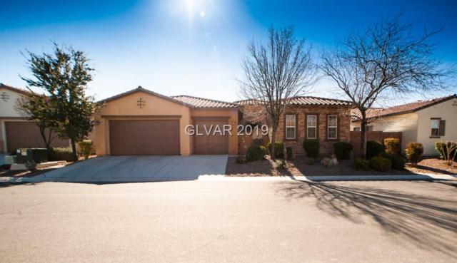 5295 E Agio, Pahrump, NV 89061 (MLS #2065231) :: Vestuto Realty Group