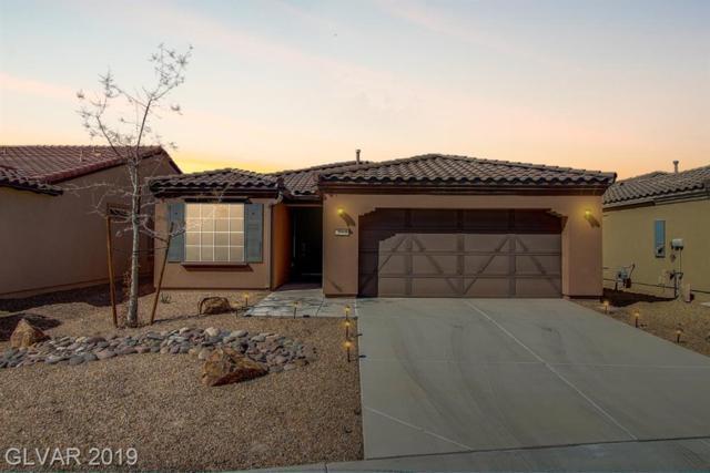 3744 Garnet Heights, Las Vegas, NV 89081 (MLS #2084496) :: Vestuto Realty Group
