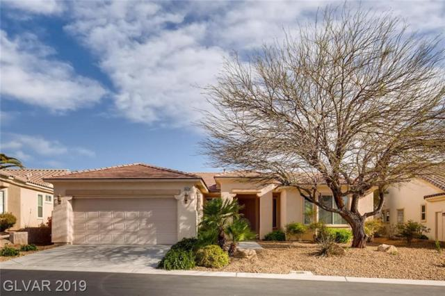 10234 Tresor, Las Vegas, NV 89135 (MLS #2085754) :: Five Doors Las Vegas