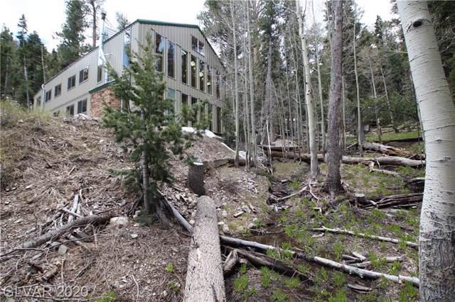 1 Deer Creek, Mount Charleston, NV 89124 (MLS #2101281) :: ERA Brokers Consolidated / Sherman Group