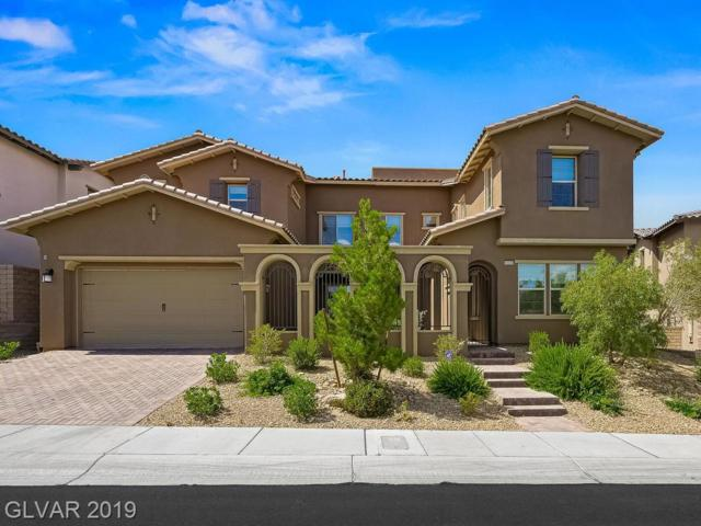12232 Valentia Hills, Las Vegas, NV 89138 (MLS #2105275) :: Trish Nash Team