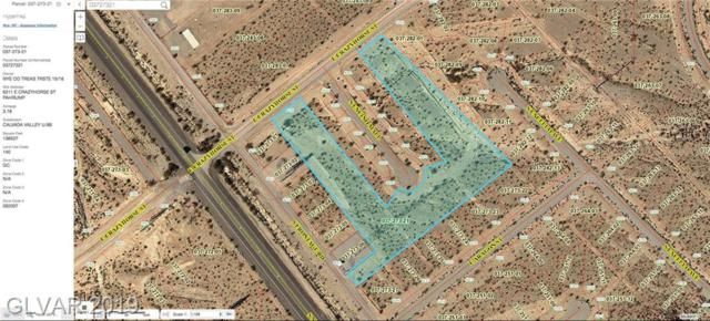 6211 E Crazyhorse, Pahrump, NV 89048 (MLS #2105719) :: Signature Real Estate Group