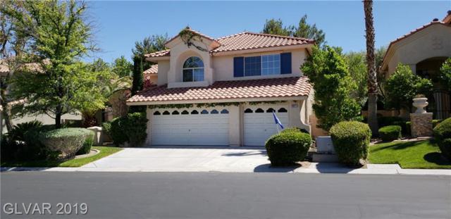 9917 Laurel Springs Ave, Las Vegas, NV 89134 (MLS #2106083) :: Vestuto Realty Group