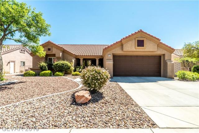2612 Saltbush, Las Vegas, NV 89134 (MLS #2107829) :: Trish Nash Team
