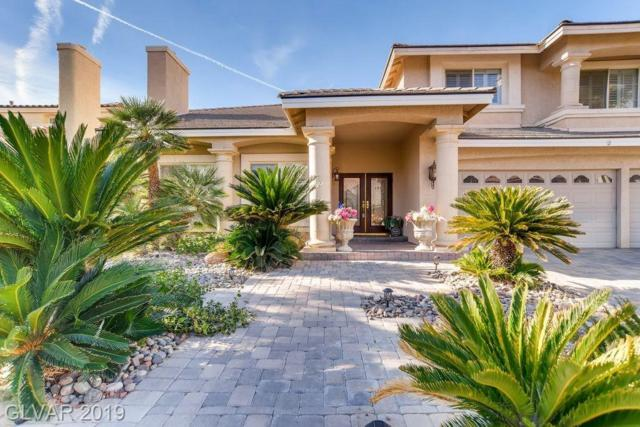 11093 Scotscraig, Las Vegas, NV 89141 (MLS #2115732) :: Vestuto Realty Group