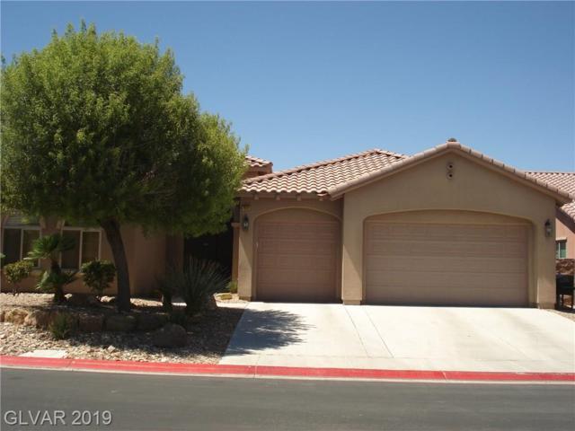 7521 Java Sparrow, North Las Vegas, NV 89084 (MLS #2123131) :: Vestuto Realty Group