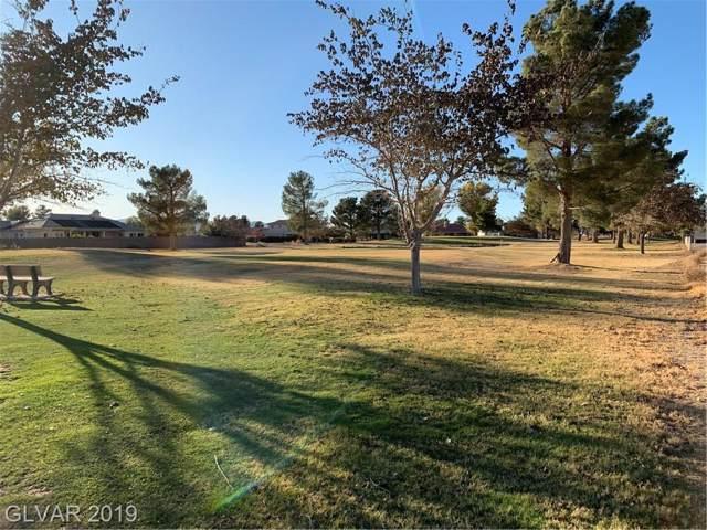 3090 S Monterey Court, Pahrump, NV 89048 (MLS #2150105) :: The Shear Team