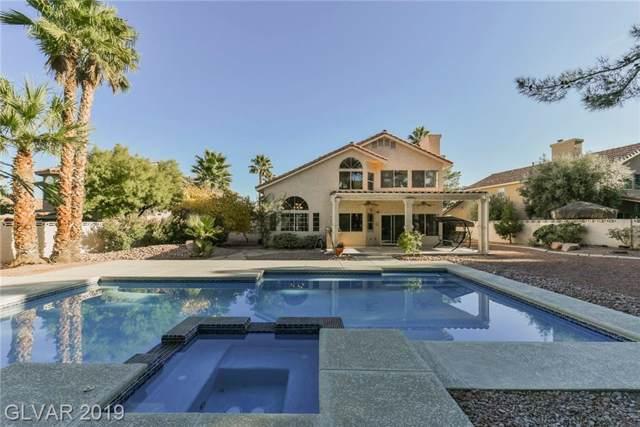 9528 Scenic Sunset, Las Vegas, NV 89117 (MLS #2151578) :: Vestuto Realty Group