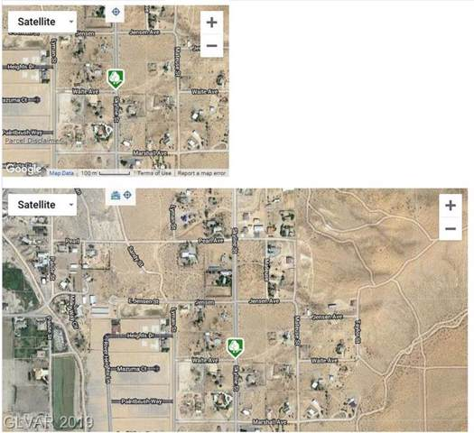 Skyline & Waite, Logandale, NV 89021 (MLS #2153524) :: ERA Brokers Consolidated / Sherman Group
