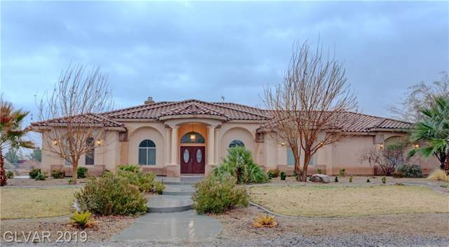 3611 S Oakleaf, Pahrump, NV 89048 (MLS #2157478) :: Trish Nash Team