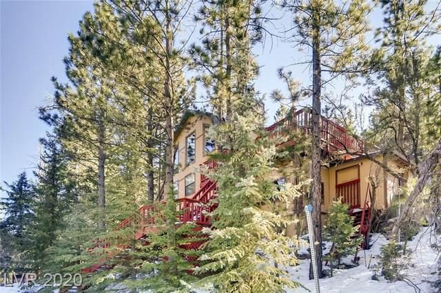 323 Ski Trail Road, Mount Charleston, NV 89124 (MLS #2165640) :: ERA Brokers Consolidated / Sherman Group