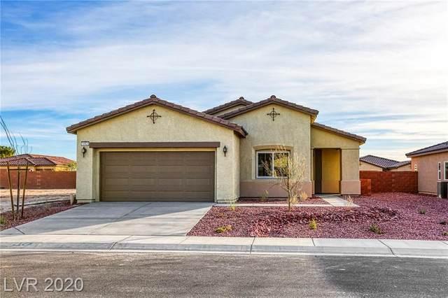 5453 E San Pietro Drive, Pahrump, NV 89061 (MLS #2168908) :: Signature Real Estate Group