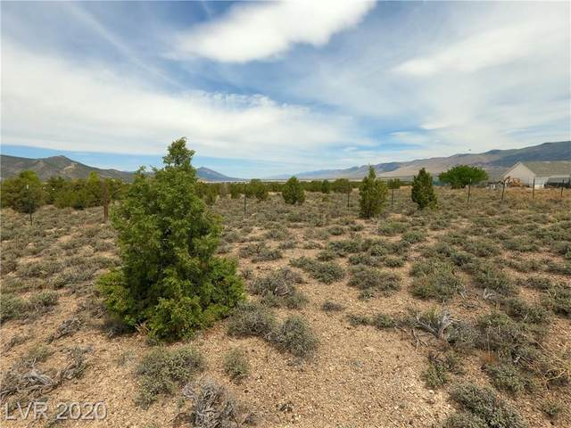 Pinyon Pine Lane, Ely, NV 89301 (MLS #2198044) :: Vestuto Realty Group