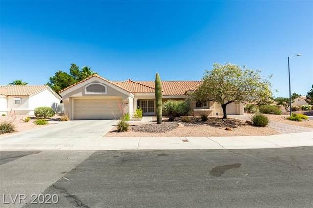 8508 Waycross, Las Vegas, NV 89134 (MLS #2199511) :: Signature Real Estate Group