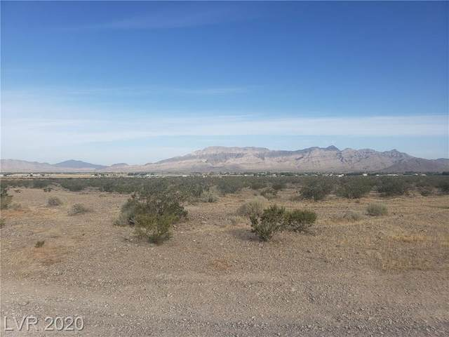 4480 N Horizon Avenue, Pahrump, NV 89060 (MLS #2204459) :: Jeffrey Sabel