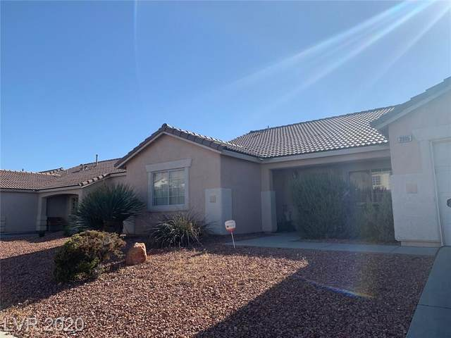 3905 Blue Gull Street, North Las Vegas, NV 89032 (MLS #2208056) :: Signature Real Estate Group