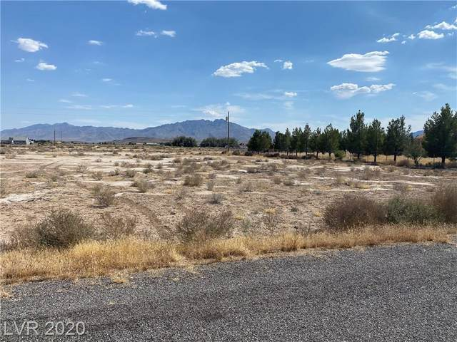 4701 Prospector Lane, Pahrump, NV 89048 (MLS #2213240) :: Performance Realty