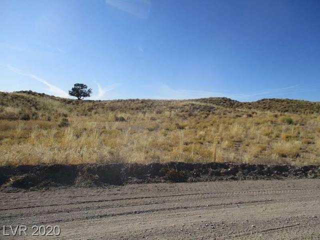 Baseline, Pioche, NV 89043 (MLS #2215827) :: Signature Real Estate Group