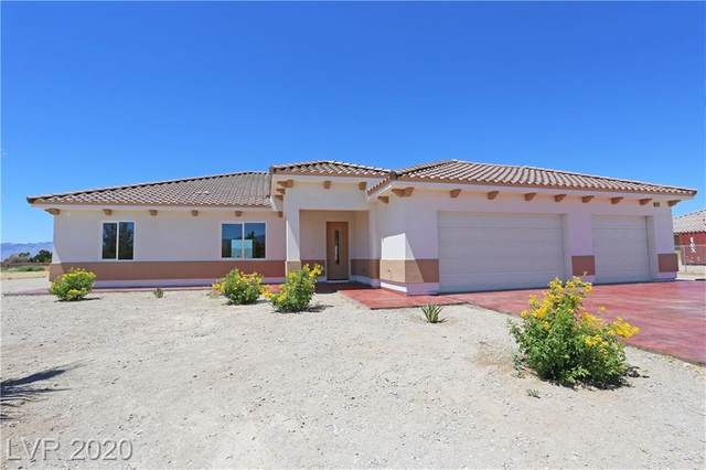 2800 Peggy Avenue, Pahrump, NV 89048 (MLS #2219294) :: Performance Realty