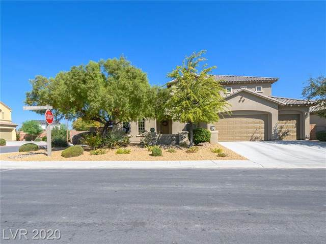 3916 Marsh Sparrow Lane, North Las Vegas, NV 89084 (MLS #2231126) :: Signature Real Estate Group