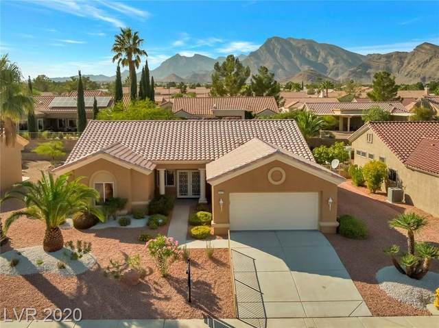 3021 Cradle Mountain Drive, Las Vegas, NV 89134 (MLS #2238671) :: The Perna Group