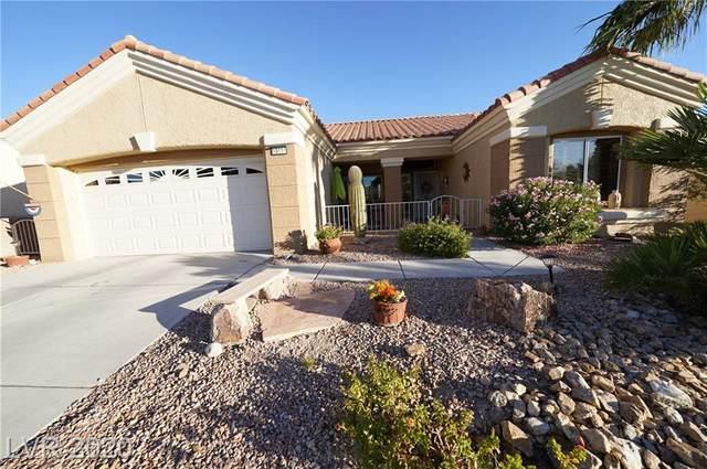10416 Sawmill Avenue, Las Vegas, NV 89134 (MLS #2242384) :: Signature Real Estate Group