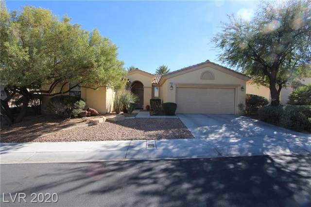 10583 Riva De Fiore Avenue, Las Vegas, NV 89135 (MLS #2243677) :: Vestuto Realty Group