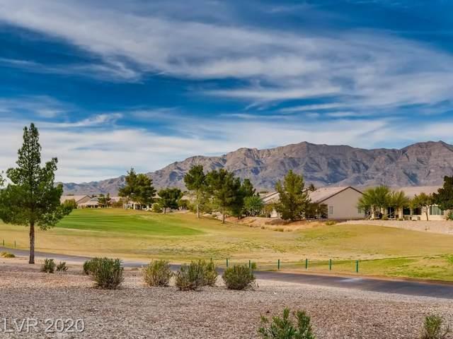 2504 Lark Sparrow Street, North Las Vegas, NV 89084 (MLS #2246372) :: Hebert Group | Realty One Group