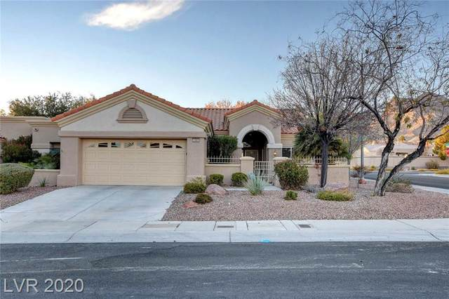 2309 Barbers Point Place, Las Vegas, NV 89134 (MLS #2251274) :: The Perna Group