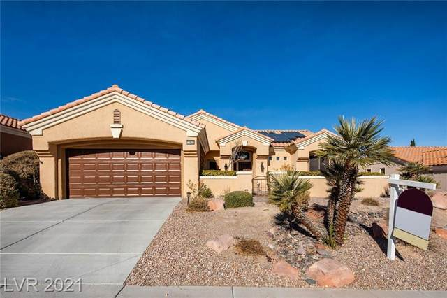 10620 Mission Lakes Avenue, Las Vegas, NV 89134 (MLS #2259920) :: Team Michele Dugan