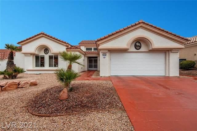 10725 Back Plains Drive, Las Vegas, NV 89134 (MLS #2263716) :: ERA Brokers Consolidated / Sherman Group