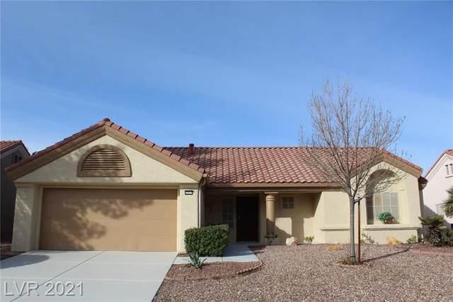 2517 Palmridge Drive, Las Vegas, NV 89134 (MLS #2273521) :: Lindstrom Radcliffe Group