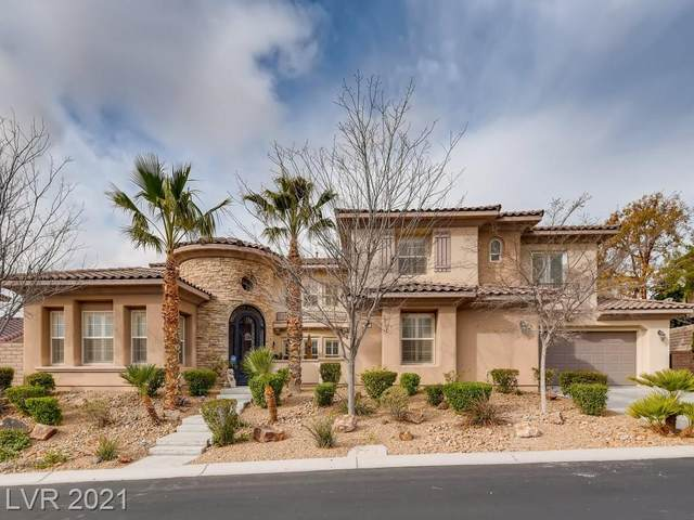 613 Tandoori Lane, Las Vegas, NV 89138 (MLS #2276073) :: Signature Real Estate Group