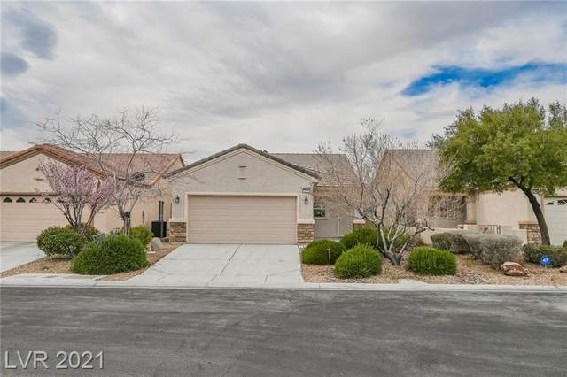 2505 Great Auk Avenue, North Las Vegas, NV 89084 (MLS #2278376) :: Signature Real Estate Group
