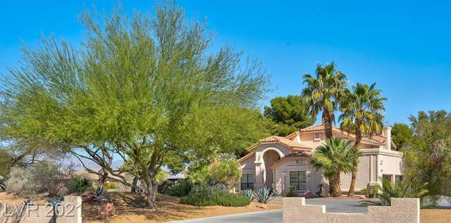 5880 W Quail Avenue, Las Vegas, NV 89118 (MLS #2285899) :: Vestuto Realty Group